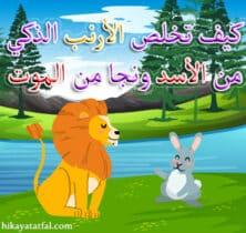 قصص عربيه
